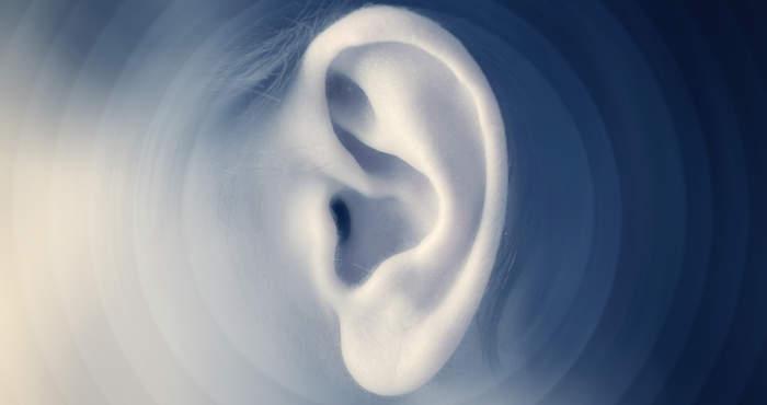 Brake Noise Vibration Harshness
